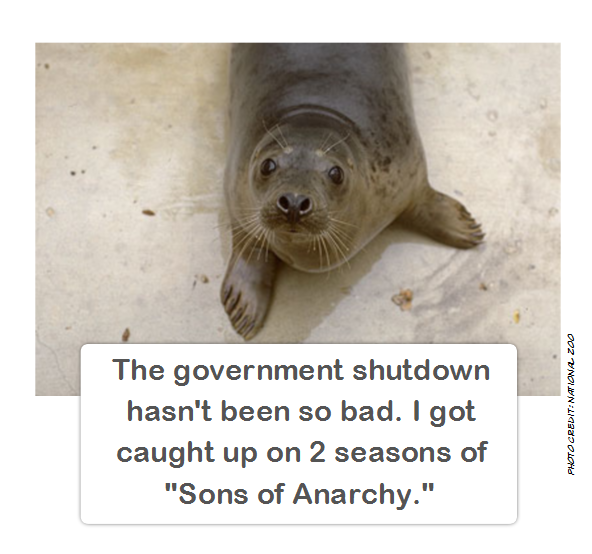 government_shutdown_sons