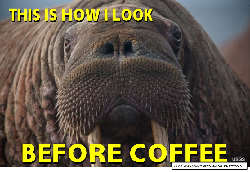 This is how I look before coffee