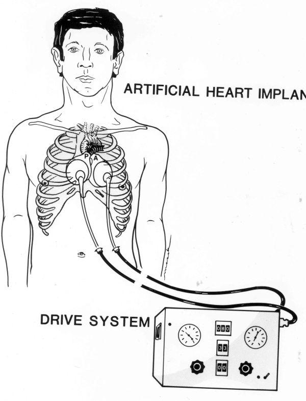 hockey heart monitor - 600w