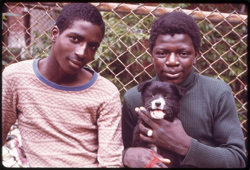 Young men holding puppy
