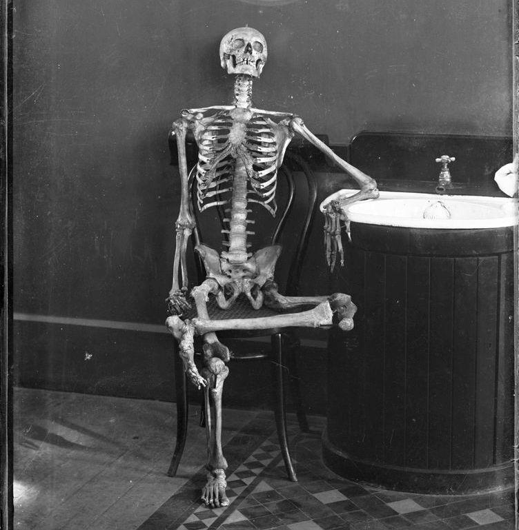 2980051095_28df8aeb2f_o powerhouse museum-skeleton-1900-crop2