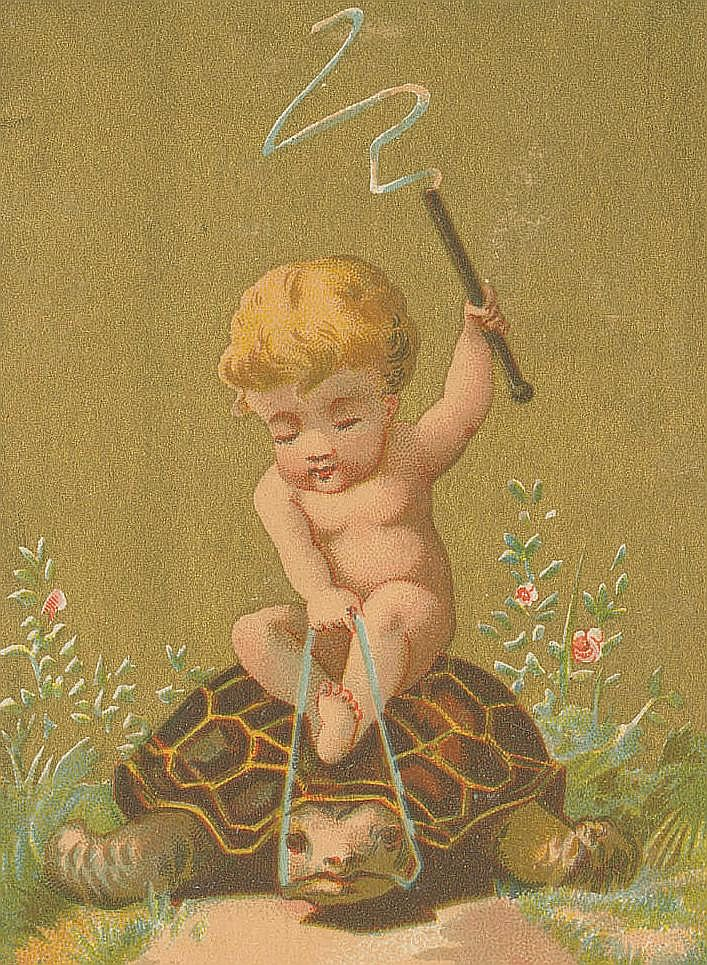 library company of philadelphia via fc-1885 6669222029--kid-child-slow-turtle